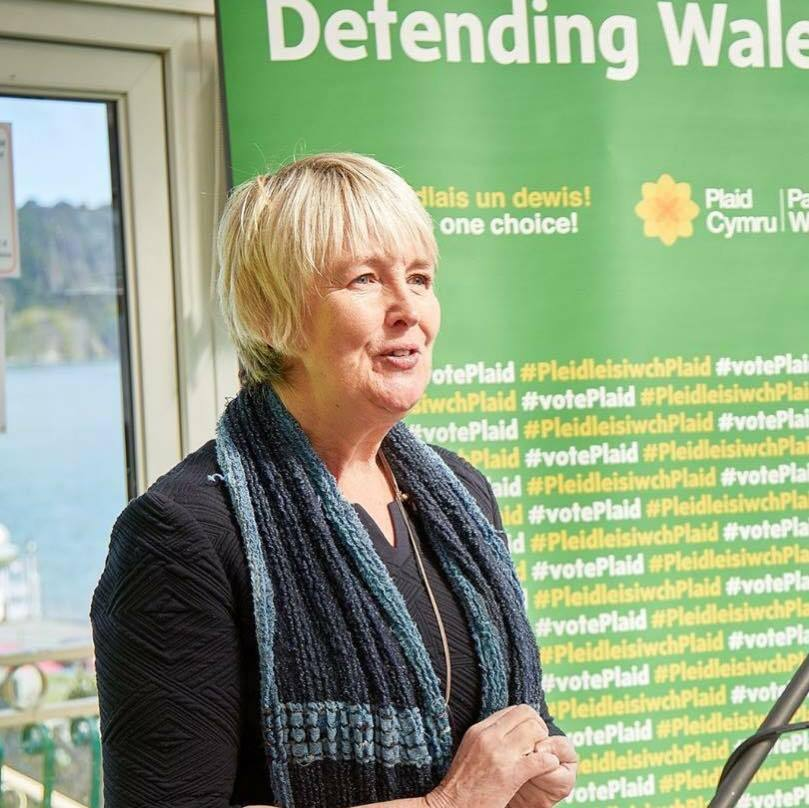 Sian Gwenllian AM has called waiting times for orthopaedic patients in Wales