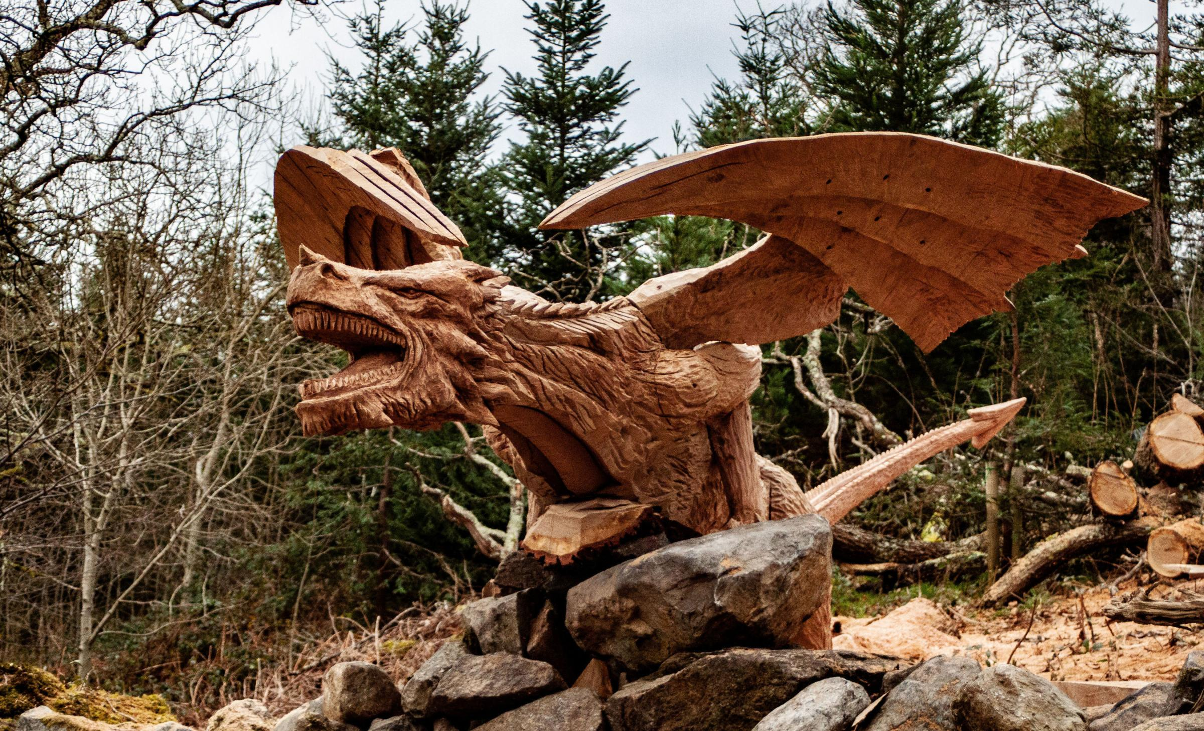 Y Draig Dderw has been causing quite a stir among motorists. Photo credit: Simon O'Rourke Tree Carving/PA.